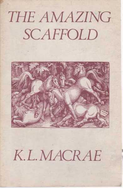 Image for The Amazing Scaffold