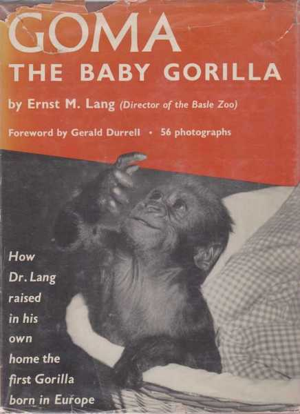 Image for Goma, The Baby Gorilla