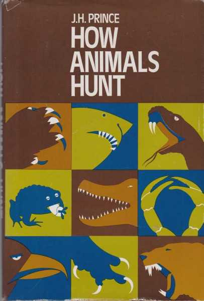Image for How Animals Hunt