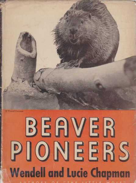Image for Beaver Pioneers