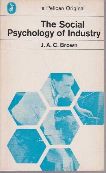 Image for The Social Psychology of Industry