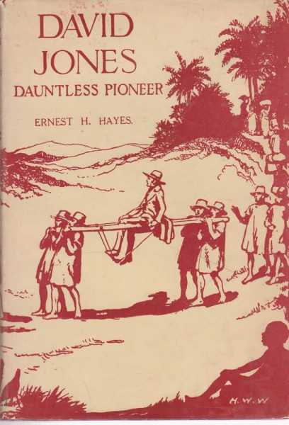 Image for David Jones Dauntless Pioneer - An Epic Story of Heroic Endeavour in Madagascar [The Pioneer Series]