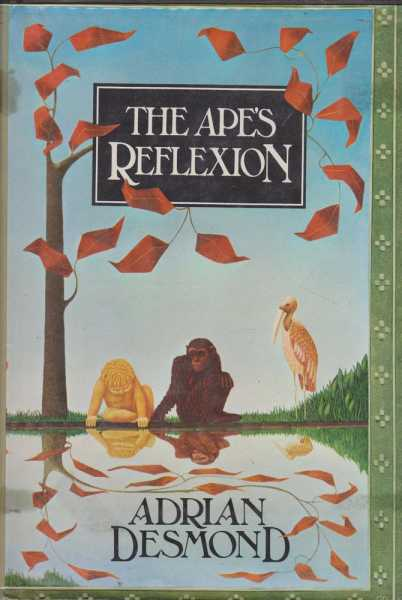 Image for The Ape's Reflexion