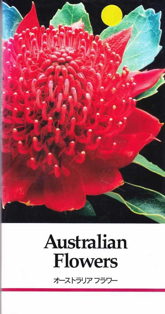 Image for Australian Flowers Catalogue for Japanese Importers