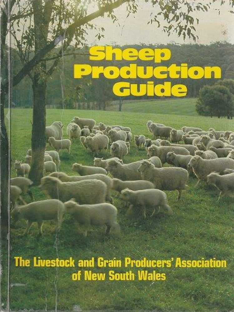 Image for Sheep Production Guide