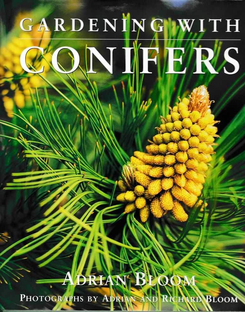 Image for Gardening With Conifers