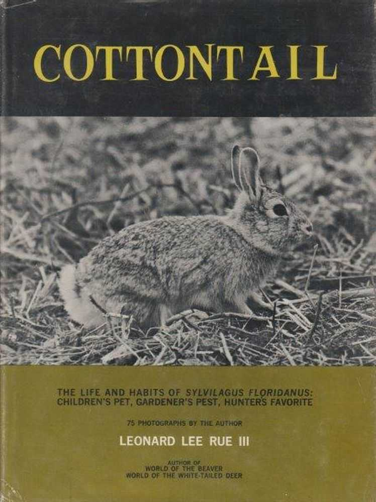 Image for Cottontail