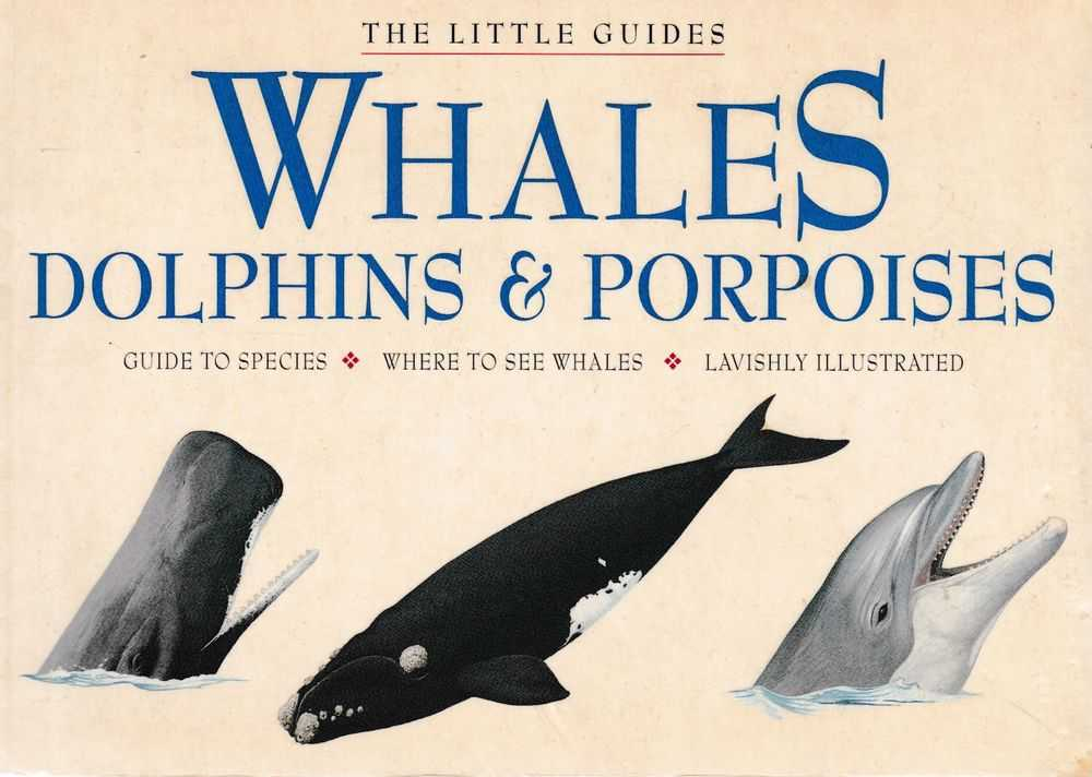 Image for Whales, Dolphins & Porpoises [The Little Guides]