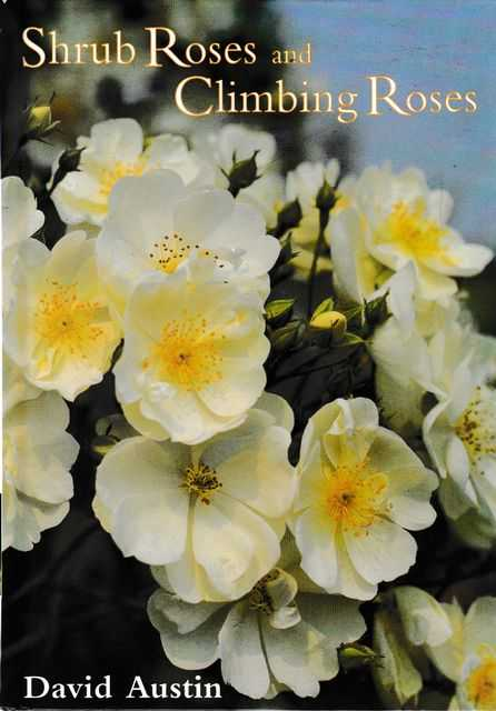Image for Shrub Roses and Climbing Roses