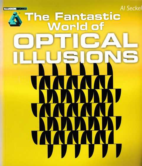 Image for The Fantastic World of Optical Illusions