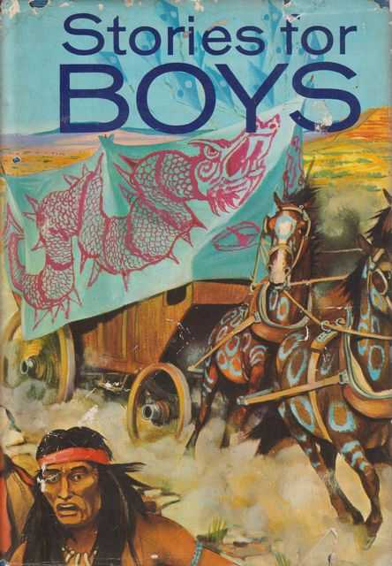Image for Stories For Boys