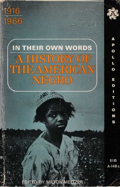 Image for In Their Own Words: A History of the American Negro [Volume 3] 1916-1966