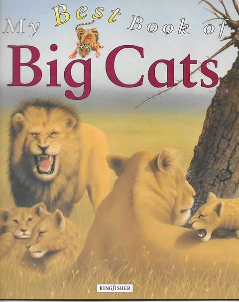 Image for Mt Best Book of Big Cats