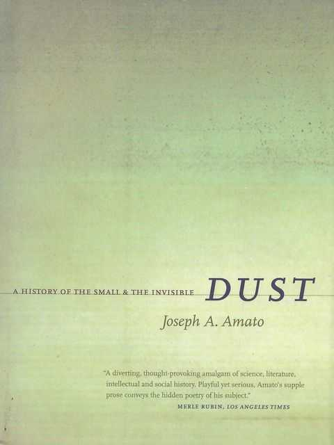 Image for Dust: A History of the Small & The Invisible