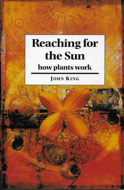 Image for Reaching for the Sun: How Plants Work