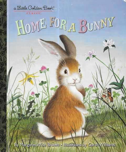 Image for Home for a Bunny