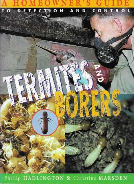 Image for Termites and Borers: A Homeowner's Guide to Detection and Control