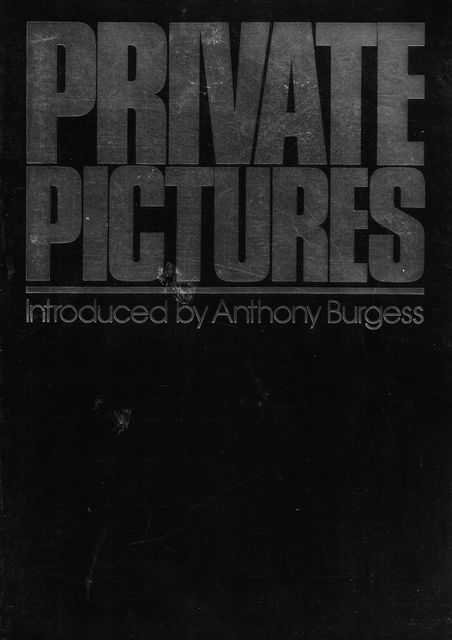Image for Private Pictures