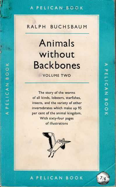 Image for Animals Without Backbones Volume Two: An Introduction to Invertebrates