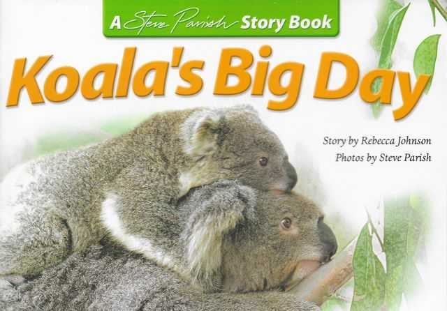 Image for Koala's Big Day [A Steve Parish Story Book]