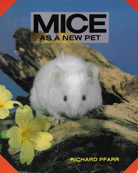Image for Mice as a New Pet
