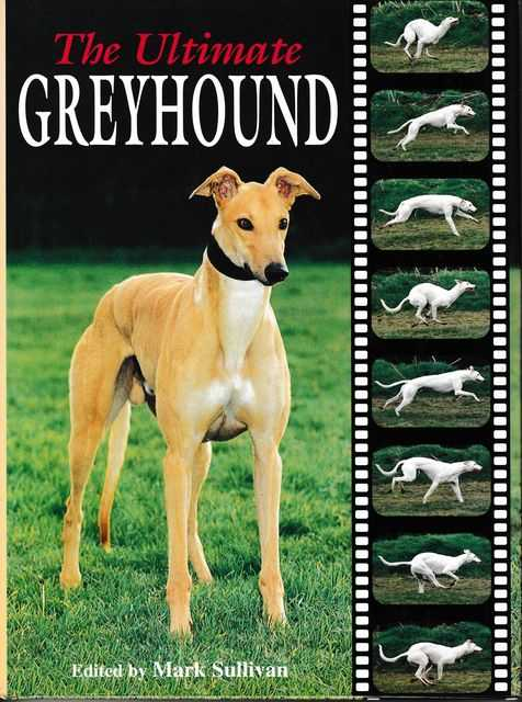 Image for The Ultimate Greyhound