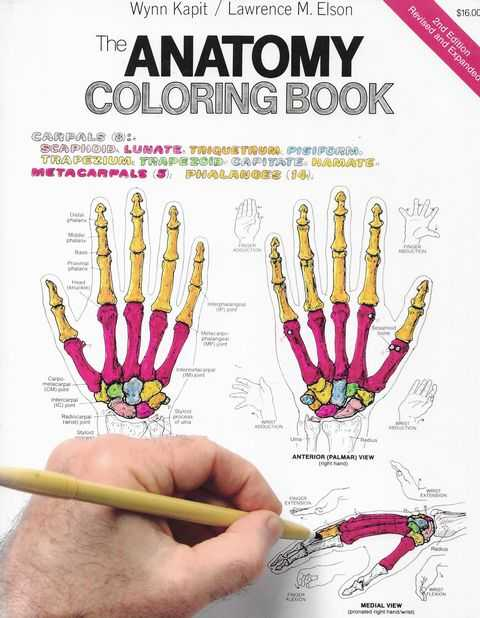 Image for The Anatomy Coloring Book