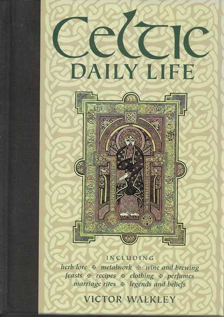 Image for Celtic Daily Life