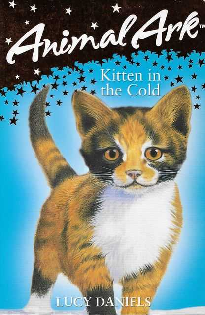 Image for Animal Ark Pets: Kitten in the Cold