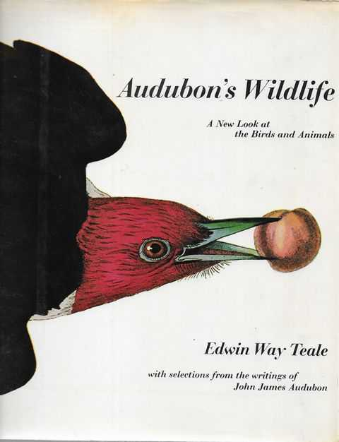 Image for Audubon's Wildlife: A New look at the Birds and Animals [ with Selections from the Writings of John James Audubon]