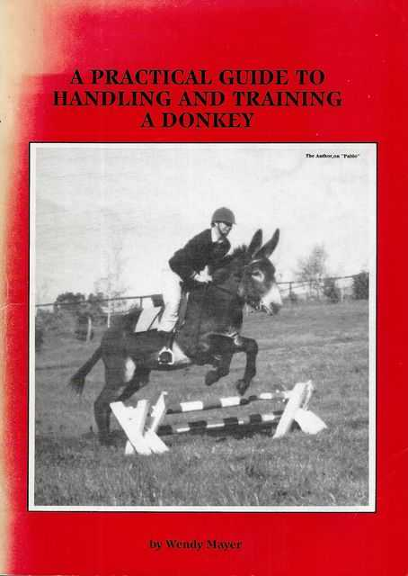 Image for A Practical Guide to Handling and Training a Donkey