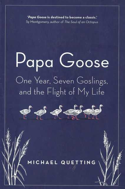 Image for Papa Goose: One Year, Seven Goslings, and the Flight of my Life