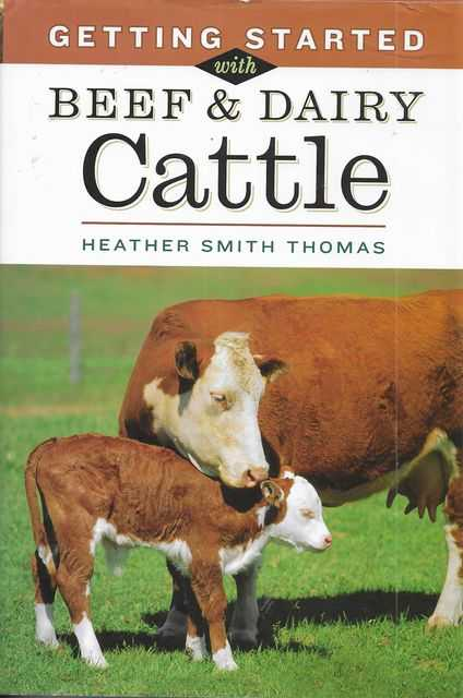 Image for Getting Started with Beef & Cattle