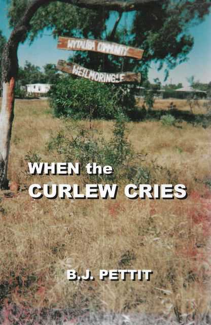 Image for When The Curlew Cries