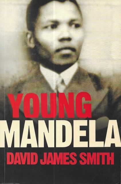 Image for Young Mandela