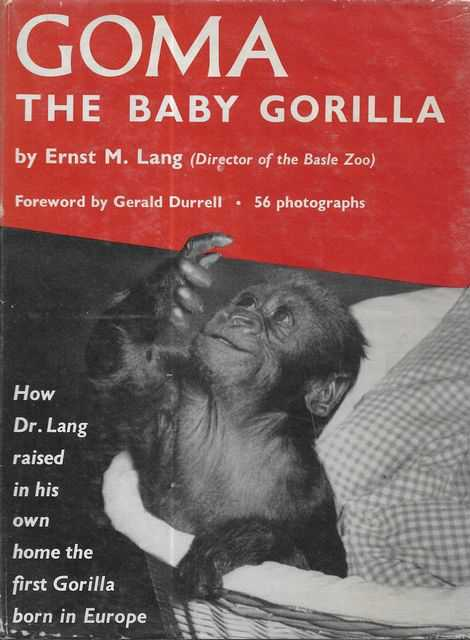 Image for Goma - The Baby Gorilla