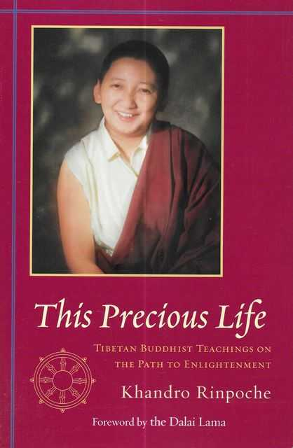 Image for This Precious Life: Tibetan Buddhist Teachings on The Path to Enlightenment