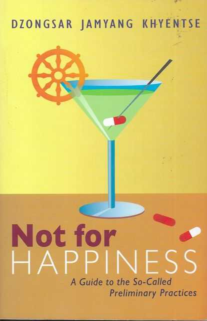 Image for Not For Happiness: A Guide to the So-Called Preliminary Practices