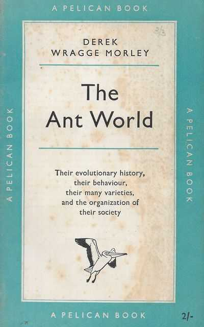 Image for The Ant World