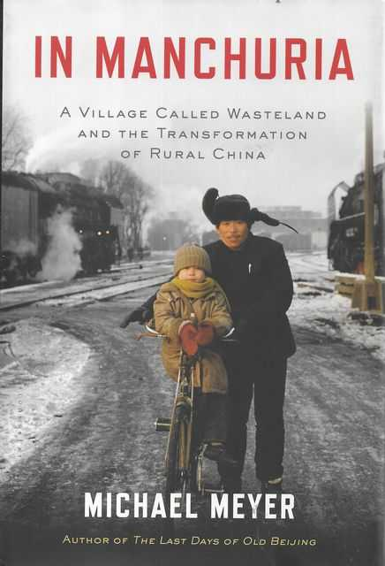 Image for In Manchuria: A Village Called Wasteland and the Transformation of Rural China