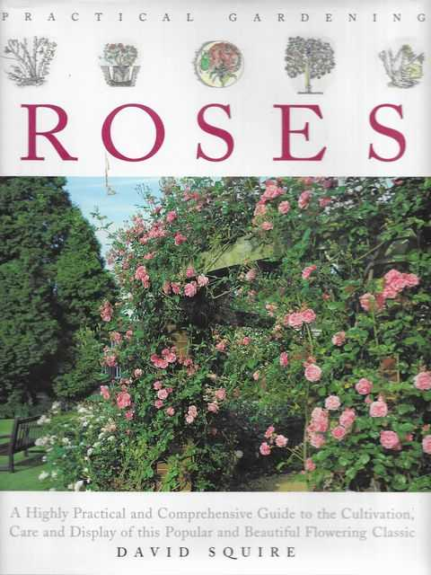 Image for Practical Gardening: Roses - A Highly Practical and Comprehensive Guide to the Cultivation, Care and Display of this Popular and Beautiful Flowering Classic