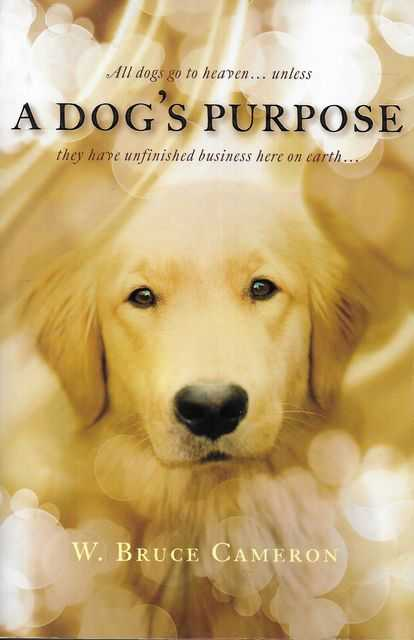 Image for A Dog's Purpose