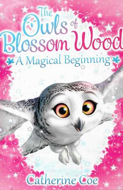 Image for The Owls of Blossom A Magical Beginning