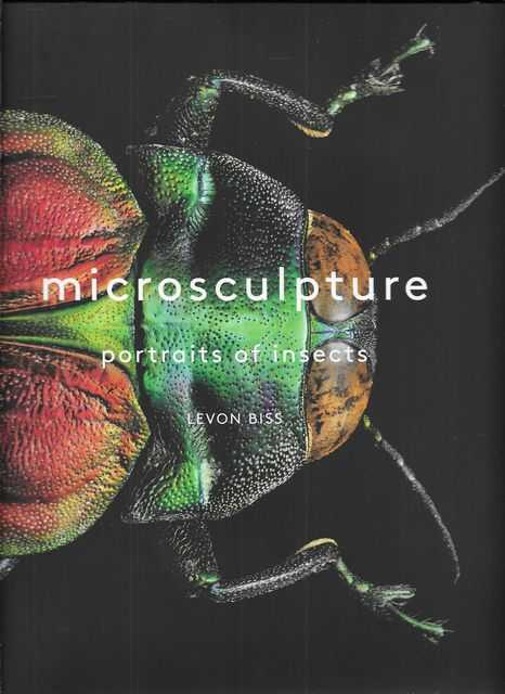 Image for Microsculpture: Portraits of Insects