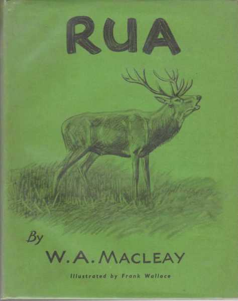 Image for RUA: THE STORY OF A HIGHLAND RED DEER
